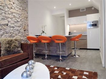 Cannes apartment for rent in the pedestrian street in Cannes : ID 446